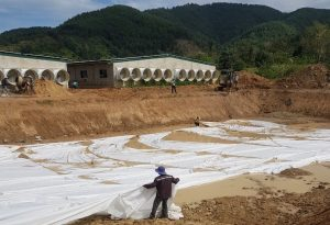 xử lý nước thải chăn nuôi heo